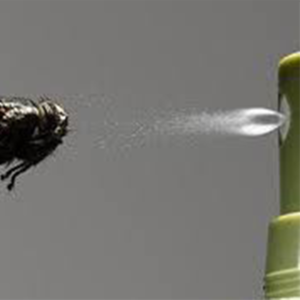 better-homes-supplies-image-fly-spray